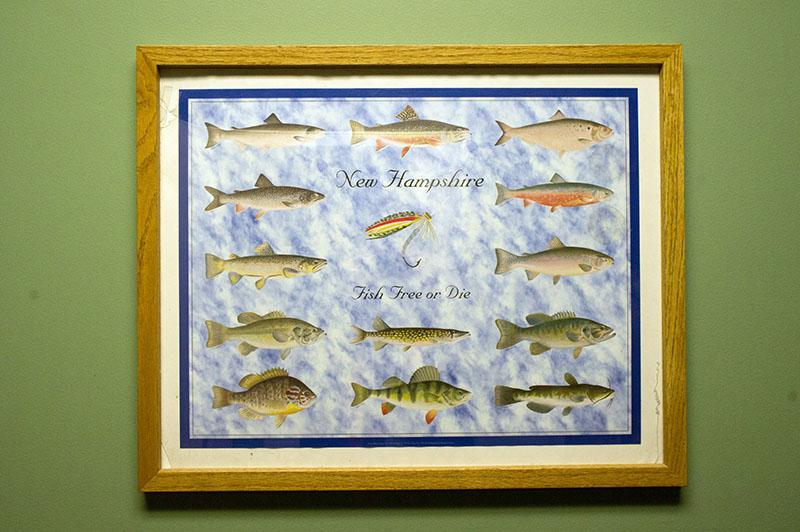 Fish free or die