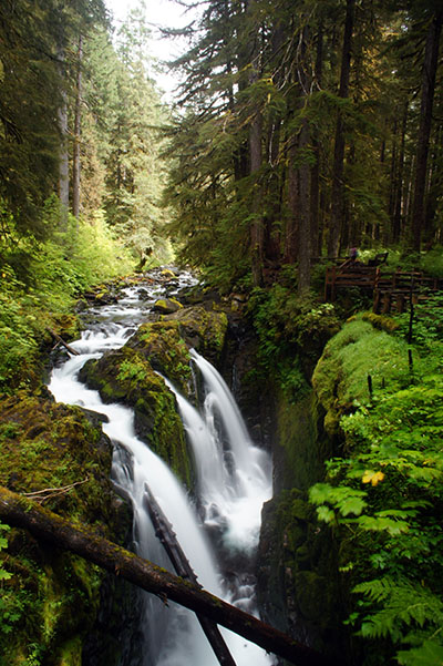 Olympic National Park - Sol Duc Valley