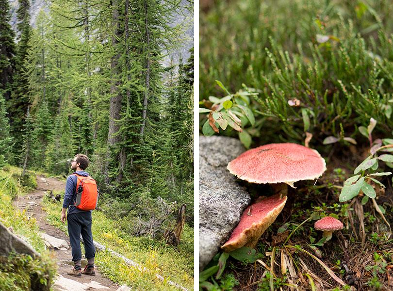 Blue Lake - North Cascades National Park trail