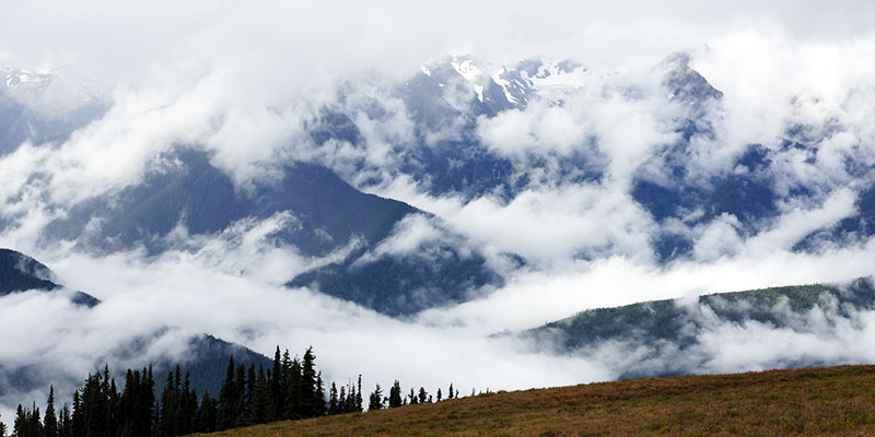hurricane ridge - Olympic National Park 2