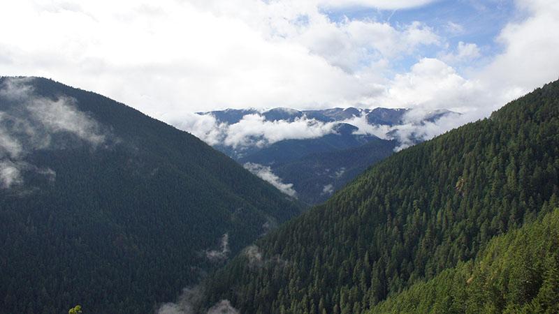 Hurricane Ridge - Olympic National Park 4