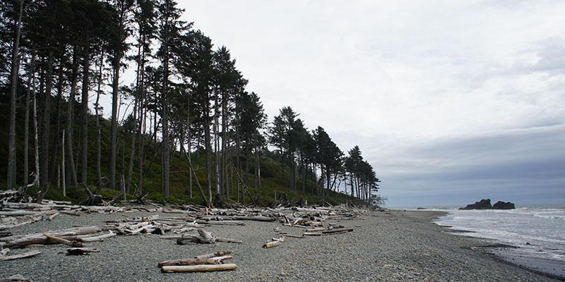 Ruby Beach - Olympic National Park 3