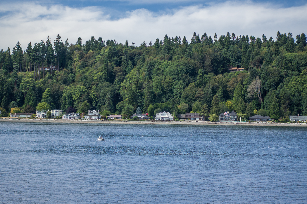 Seattle Washington forets de pin