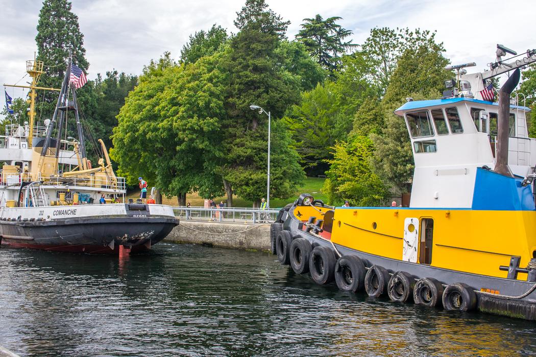 Seattle ecluses locks 3