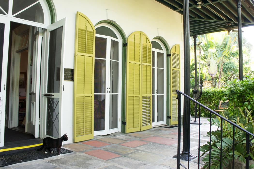 La maison d'Hemingway, à Key West