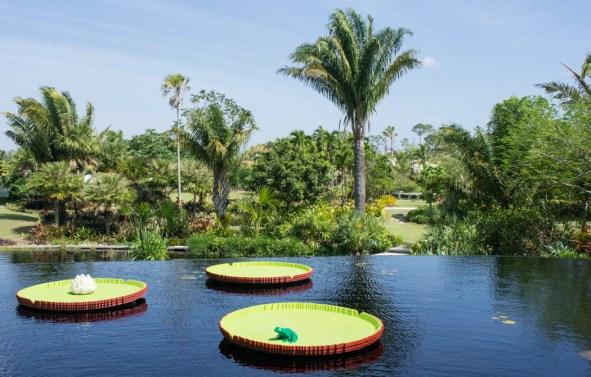 Naples Botanical Garden - exposition avec des lego - nenuphar