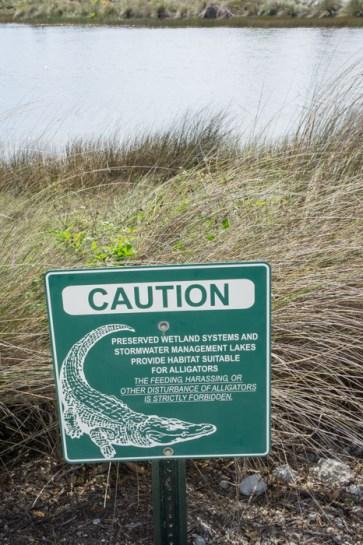 Caution alligators - Naples Botanical Garden - Floride