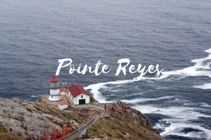 Pointe Reyes Californie