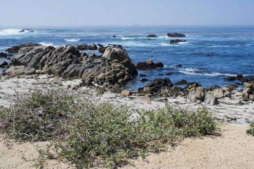 17 mile drive Monterey Carmel Californie