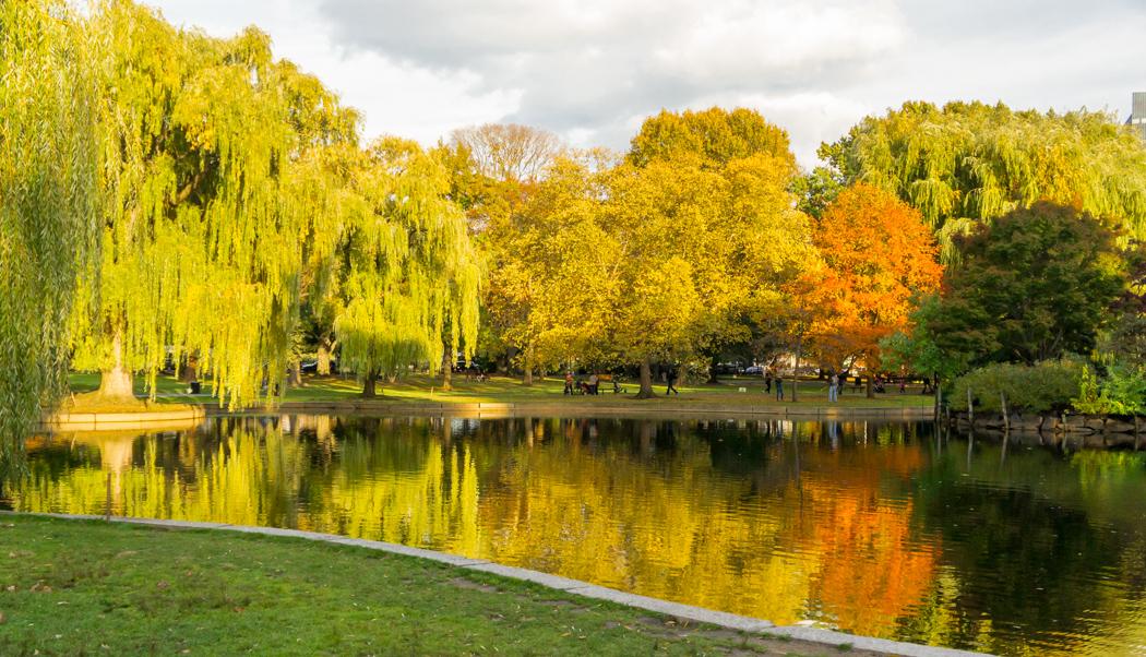 Boston automne Nouvelle Angleterre