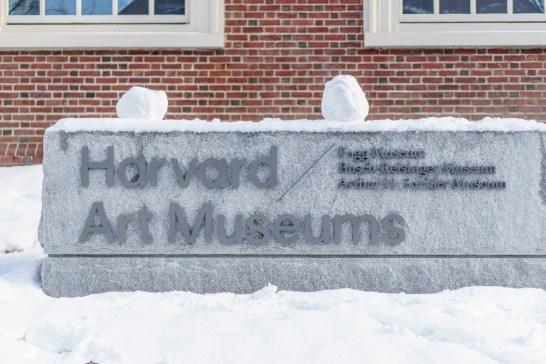 Harvard Art Museum Cambridge