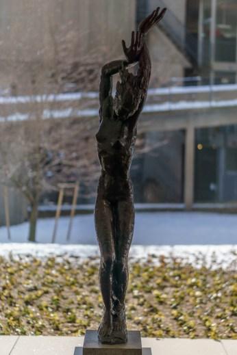 Harvard Art Museum Daphné sculpture