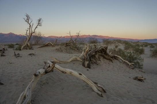 death valley california- coucher de soleil sur les dunes