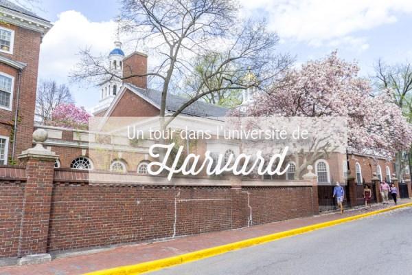 Visiter le campus de l'université de Harvard | Le blog USA ...
