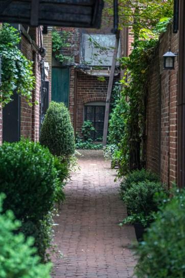 Jardins secrets Beacon Hill Boston-22