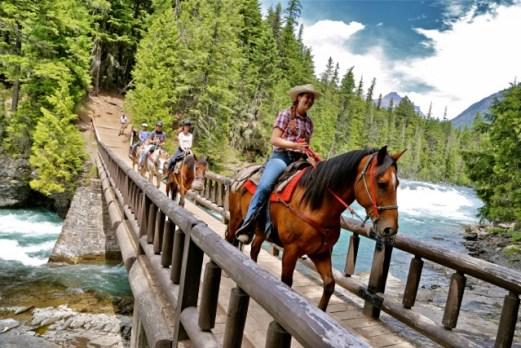 A la fin de la route aime les chevaux
