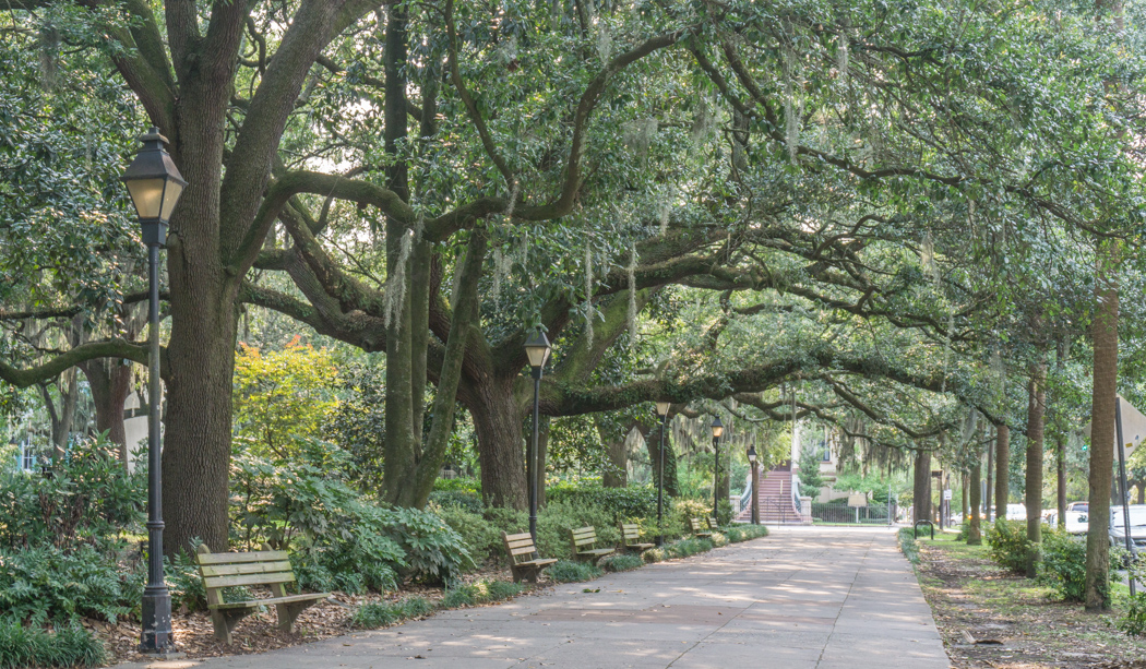 Visiter Savannah Georgie - Forsyth Park 1