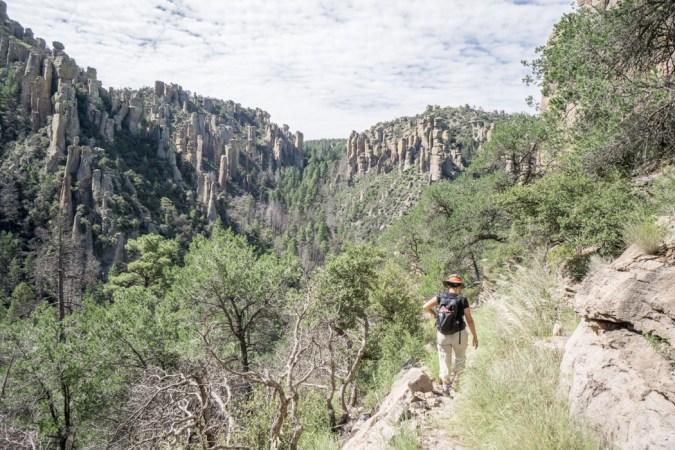 Chiricahua Arizona-7