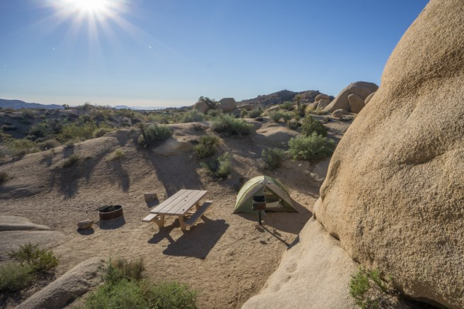 Joshua Tree Park California-1