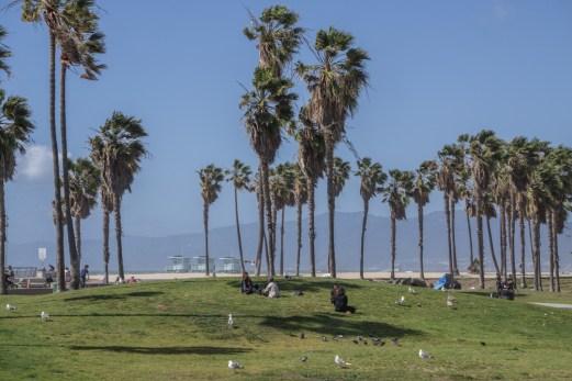 Venice Beach Los Angeles Californie-24