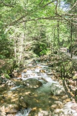Flume Gorge White Mountains New Hampshire-4