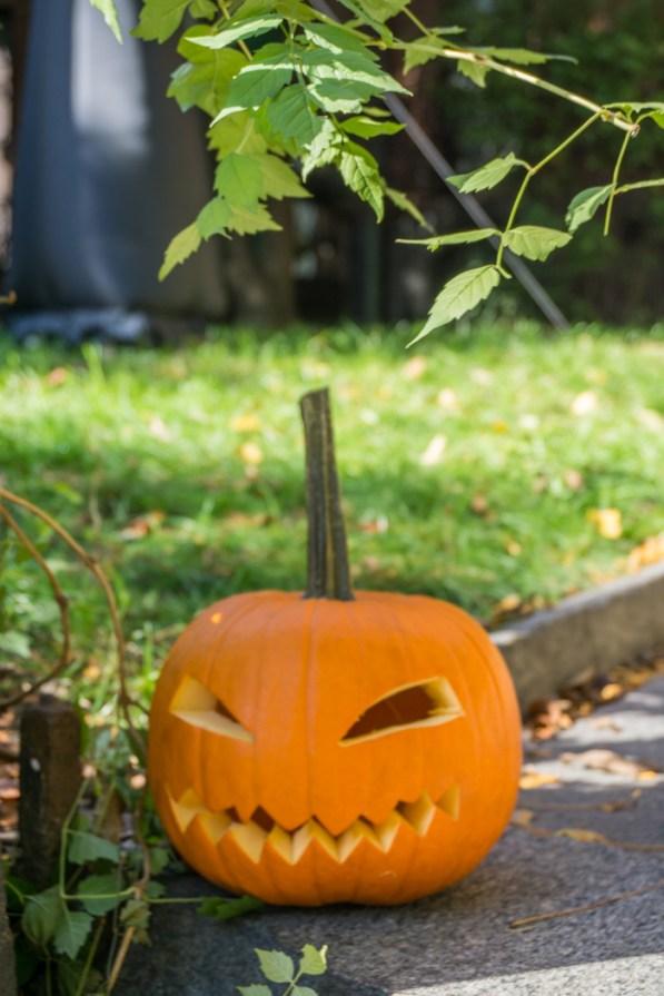 halloween-boston-18