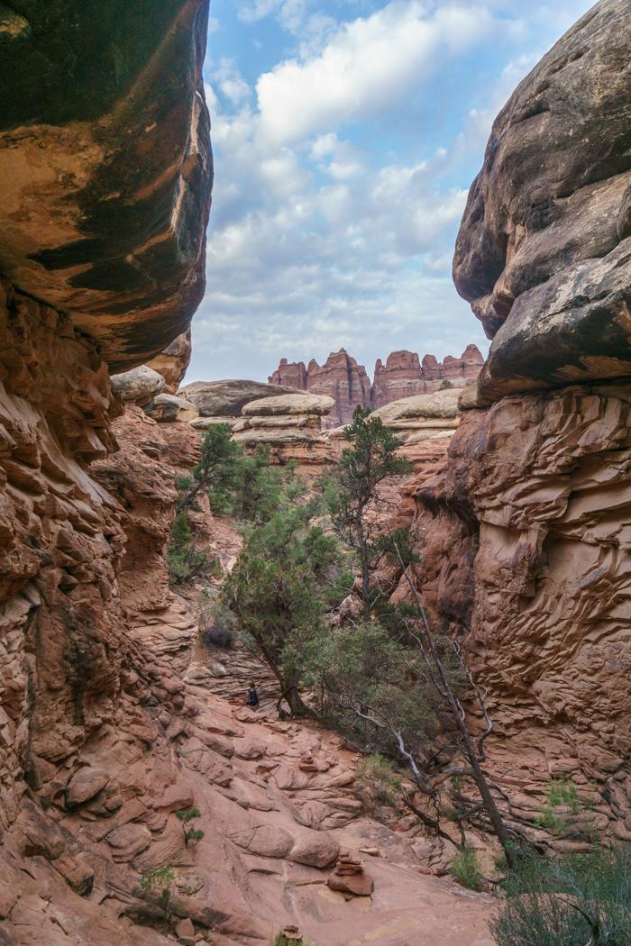 canyonlands the needles utah 5