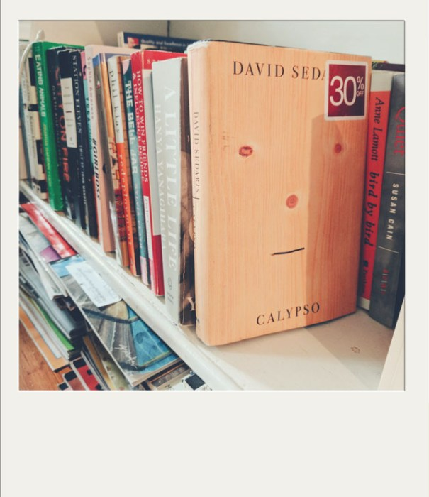 David sedaris Calypso