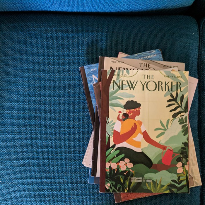 New yorker cover 2