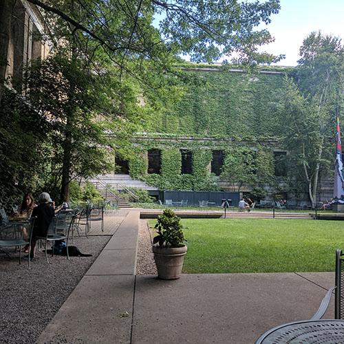 Mfa courtyard