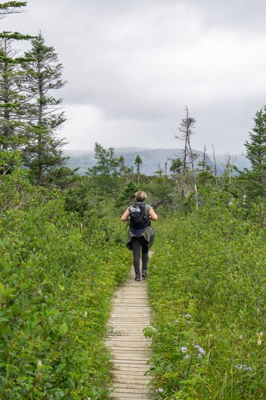 Gros morne national park newfoundland terre neuve 3