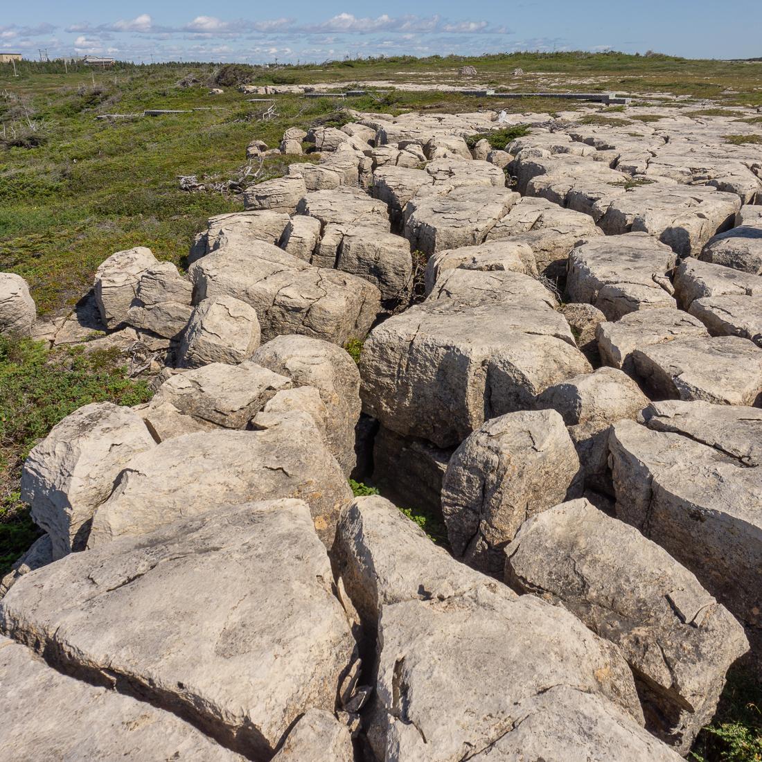 Viking trail retour newfoundland terre neuve 1