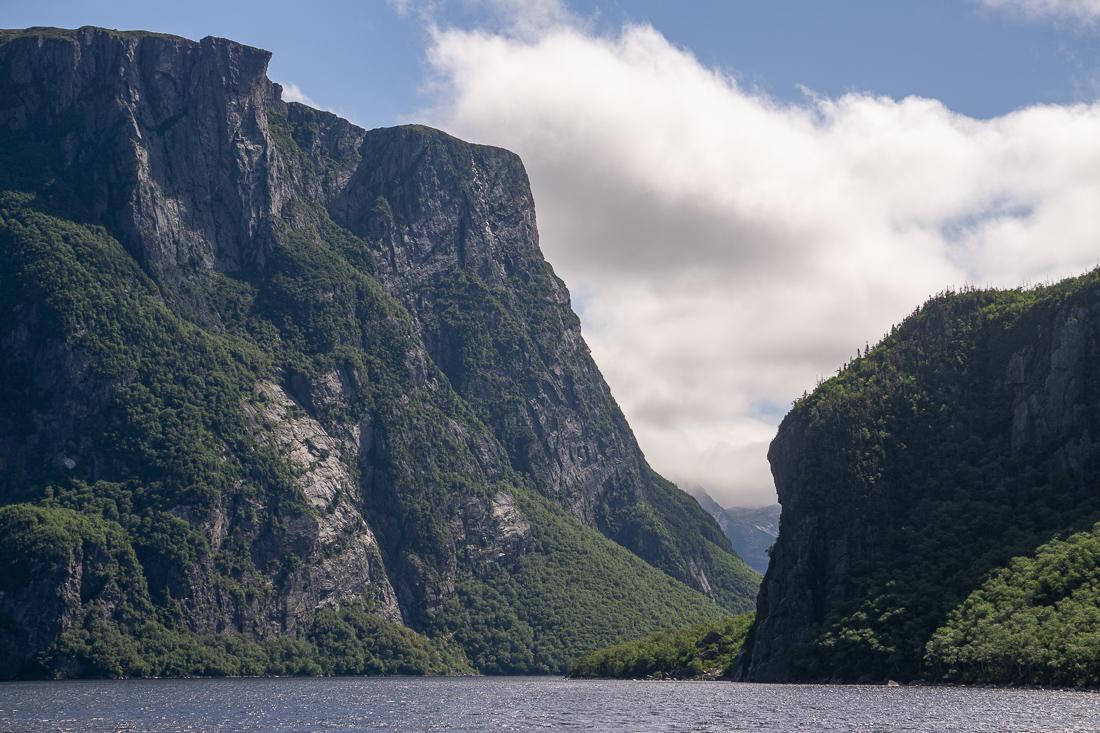 Gros morne national park tour en bateau terre neuve canada 3