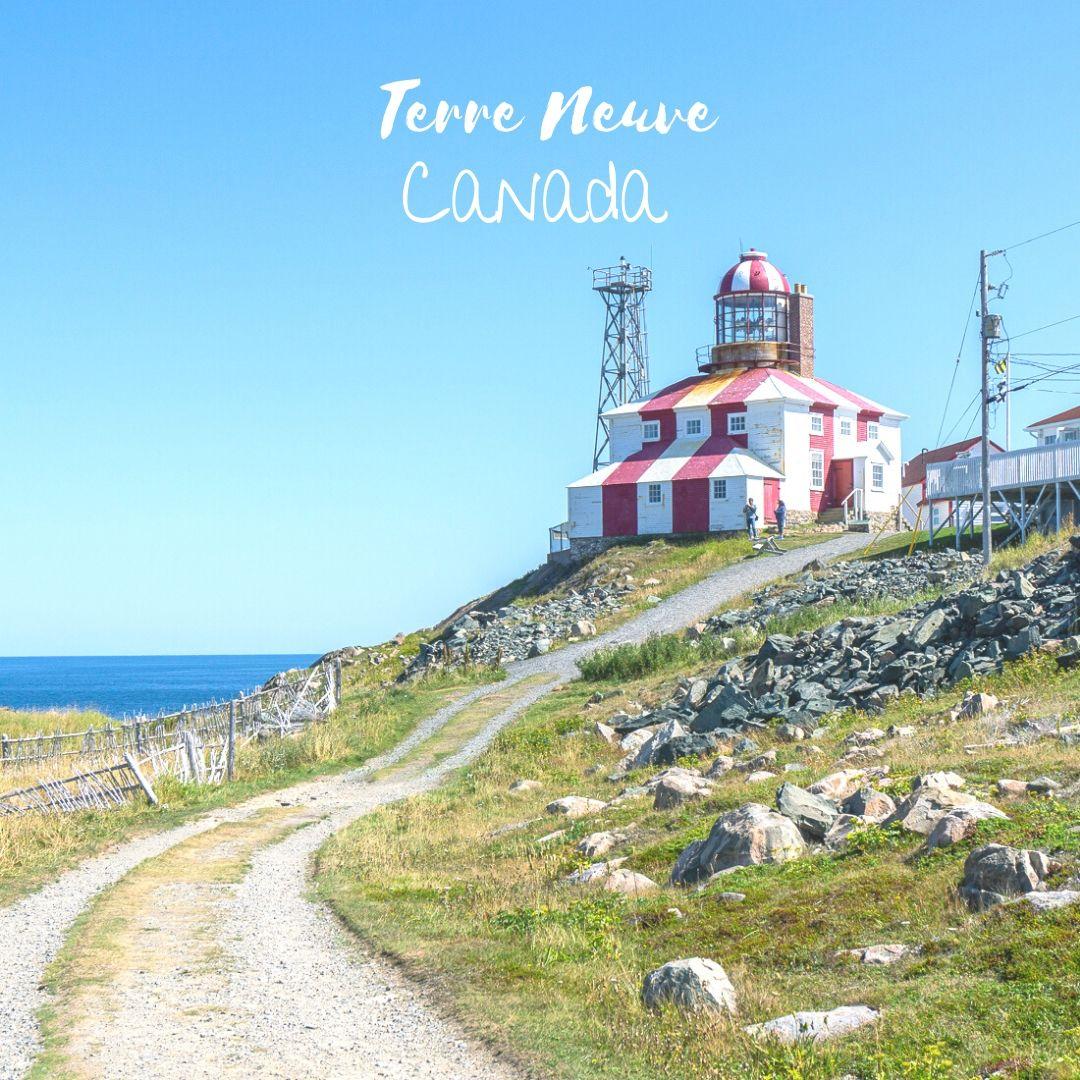 Terre neuve canada road trip