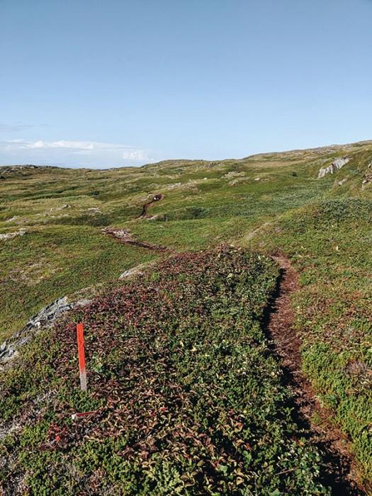 Sentier quirpon island