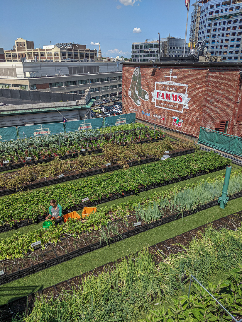 Visiter fenway park le stade de base ball de boston le blog de mathilde 6