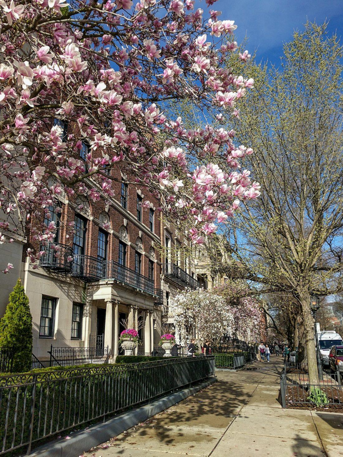 Boston printemps 1