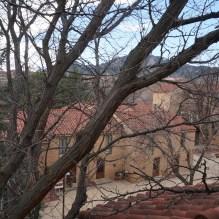 La vue de la chambre (on aperçoit les Flatirons derrière les branches)