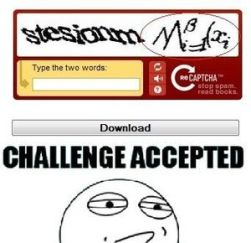 reCaptcha-WTF-challenge-accepted_fb_82537