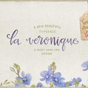 Creativemarket La Veronique Script intro 20percent off 220642 icon