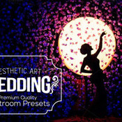 Creativemarket Aesthetic Wedding Lightroom Presets 298179 icon