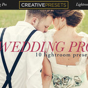 Creativemarket Wedding Pro 10 Lightroom Presets 317766 icon