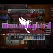 Prominy hummingbird acoustic guitar logo icon