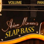 Adam monroe music slap bass icon