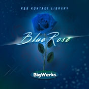 Blue rose kontakt library logo icon