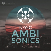 Pro sound effects library nyc ambisonics icon