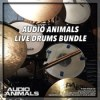 Audio animals live drums bundle kontakt icon