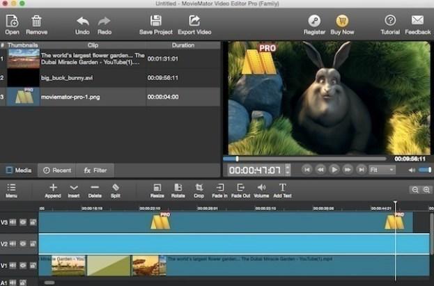 Video Editor MovieMator Pro windows