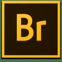 Adobe Bridge CC 2018 8.1
