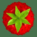 Smultron 11.1.1